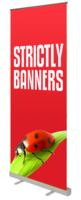 StandardPlus Rollup Banners