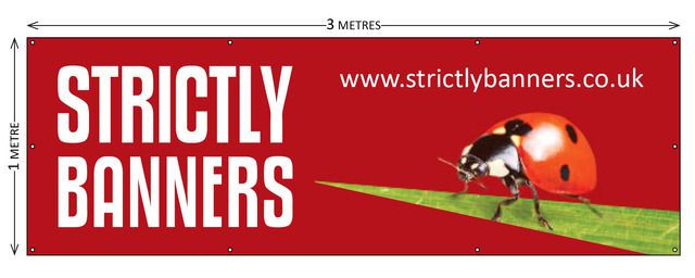 PVC Banners | Vinyl Banners | Outdoor Banners